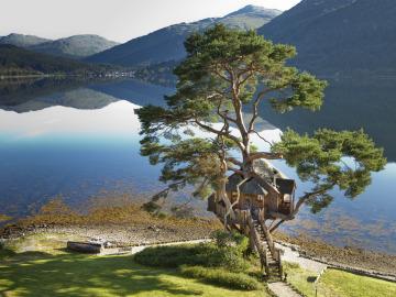 The Lodge on Loch Goil.  Casa en el árbol